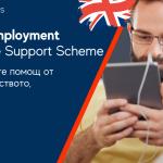 Процесът на кандидатстване за подпомагане на доходите от самостоятелна заетост COVID-19 (SEISS)
